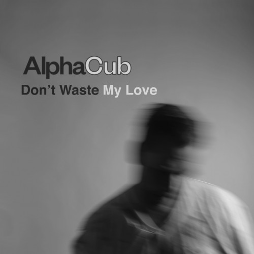 http://auteurresearch.com/wp-content/uploads/2017/10/AlphaCub_Dont-Waste-My-Love_preview-wpcf_500x500.jpg