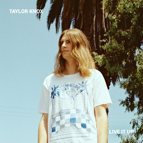 http://auteurresearch.com/wp-content/uploads/2019/04/Taylor-Knox-Live-It-Up-Cover-Art-wpcf_500x500.jpg